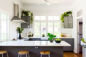 Money plant in Kitchen